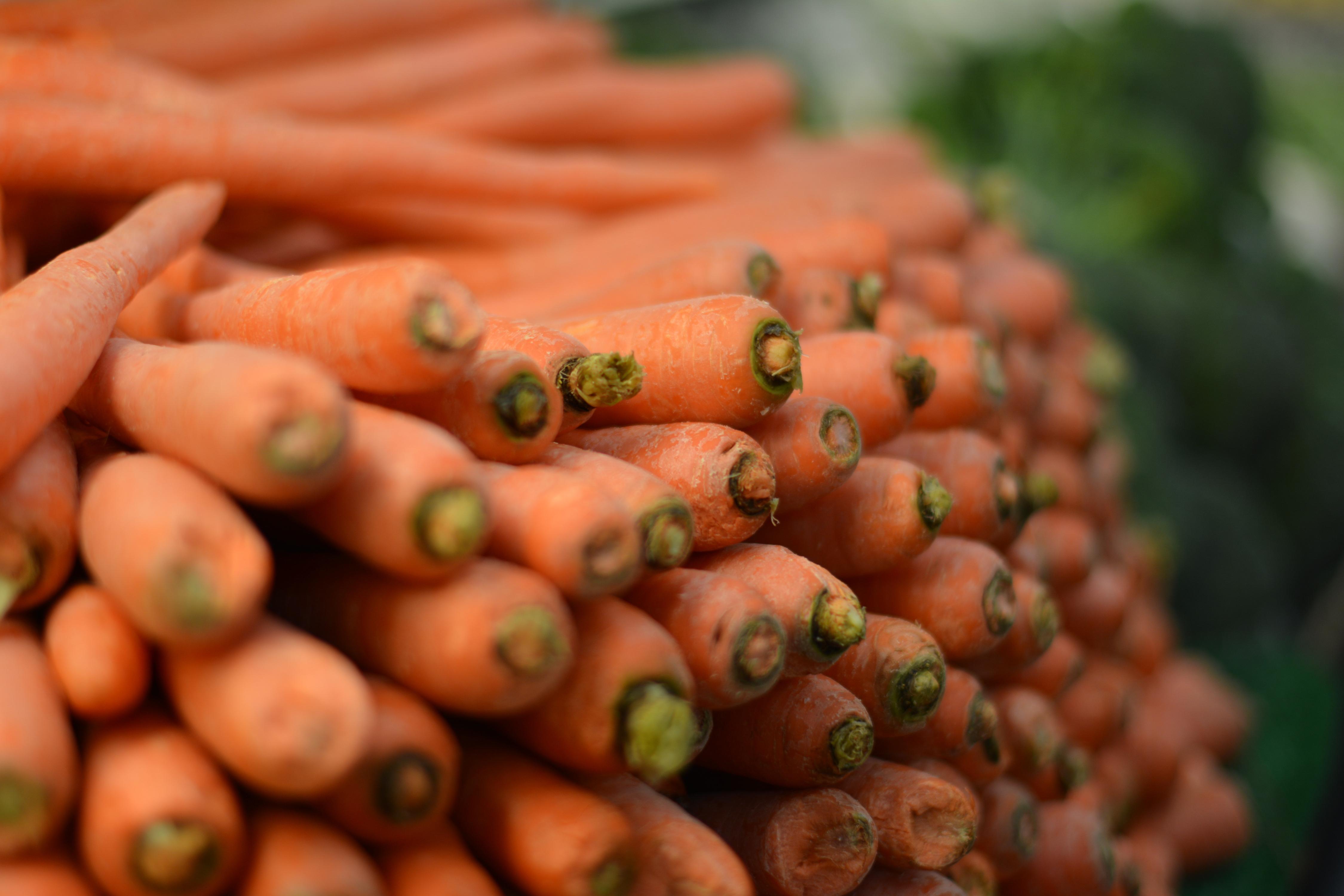 carrots-7314355